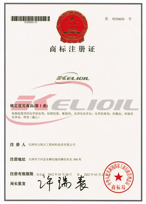Company Registered Trademark Certificate